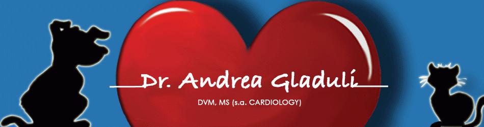 Andrea Gladuli el�inl��k�ri